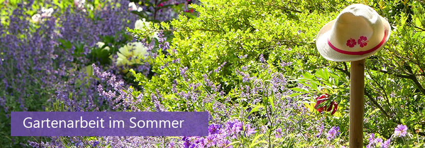 blogkategorie-das-gartenjahr-gartenarbeit-im-sommer-gross