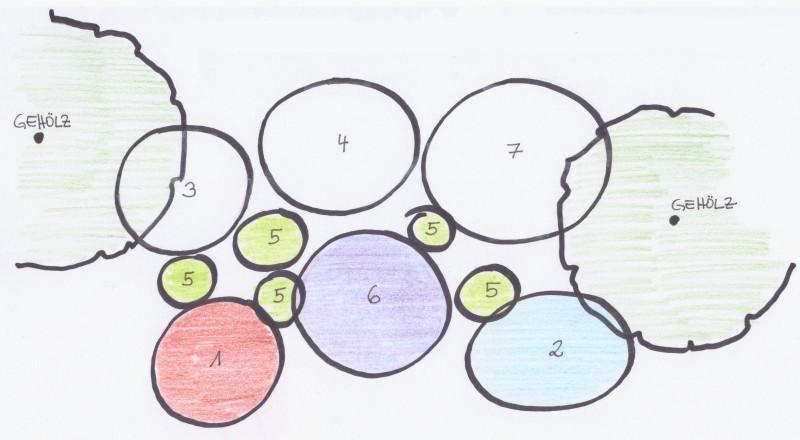 Pflanzvorschlag für den Halbschatten (Gehölzrand GR)