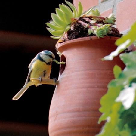 Vogelpott mit Möglichkeit zur Dachbegrünung