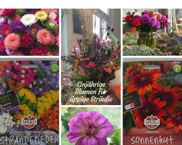 Blumen für Sträuße