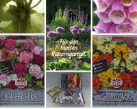 Bauerngartenblumen
